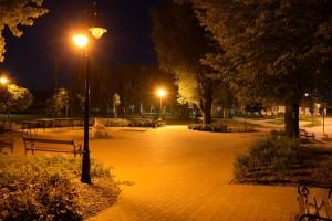 Vincze Balázs - Éjjel a parkban N